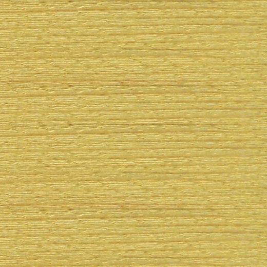 Synura. Viscosa y algas - 104
