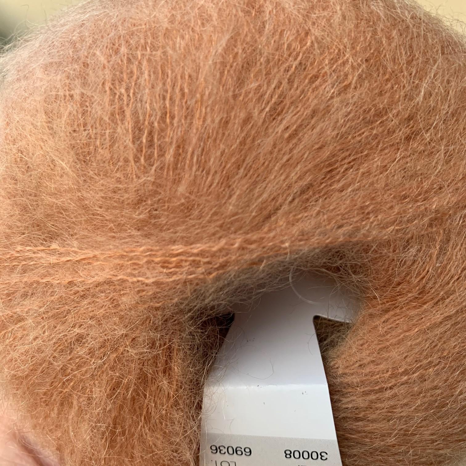 30008 camel